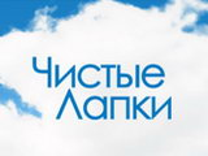Ковчег СПб ООО