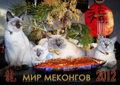 Cofein-Pride и МИР МЕКОНГОВ