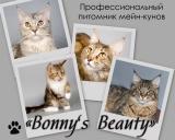 Bonny's Beauty
