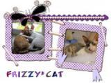 Frizzy*Cat