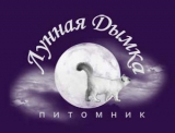 Lunnaya Dymka / Лунная Дымка