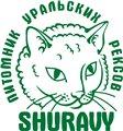 Shuravy
