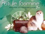 Style Jasmine