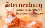 Sternenburg