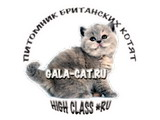High Class *RU