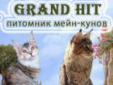 Grand Hit