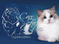 CareForPets