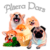 Альтера Парс (Вельш корги пемброк)