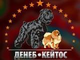 Денеб-Кейтос