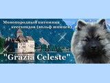 ГРАЦИЯ СЕЛЕСТЕ (GRAZIA CELESTE) - КЕЕСХОНД
