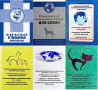 Купить Бланк Ветеринарного Паспорта - фото 10