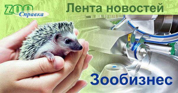 (c) Zoospravka.ru