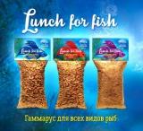 Гаммарус для всех видов рыб