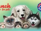 Консервированный влажный корм для собак, кошек и хорьков