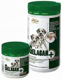 гелакан бейби для собак инструкция - фото 7